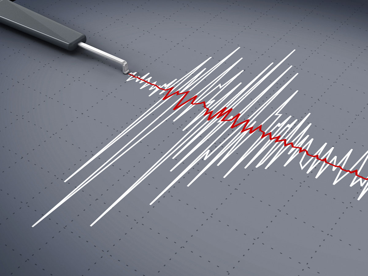 Jew Detector: The UK's Leading Polygraph